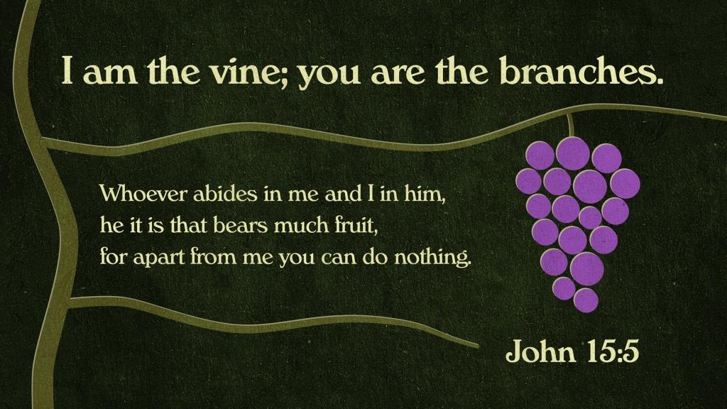 John 15:5 Image